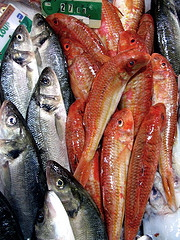 Narbonne Fish